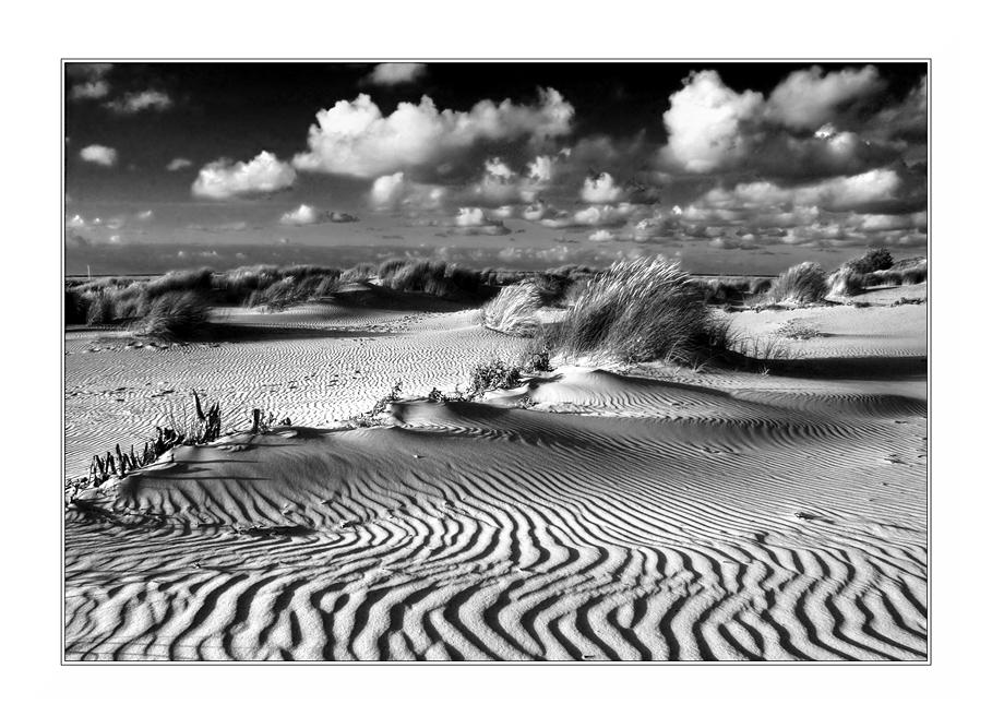 sandlinien