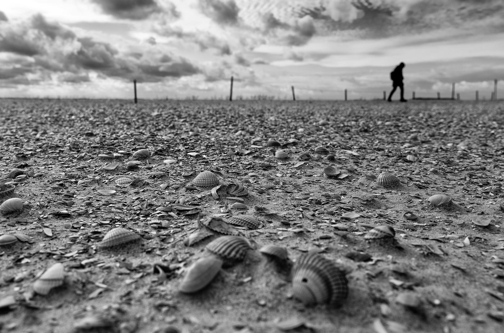 Sandmacher