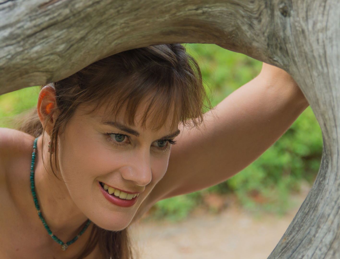 Sandra XIV