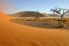 Sandstorm II