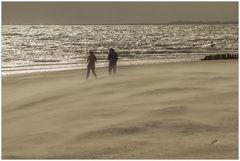 Sandsturm an der Nordsee...!  (2. der Sandsturm-Serie)