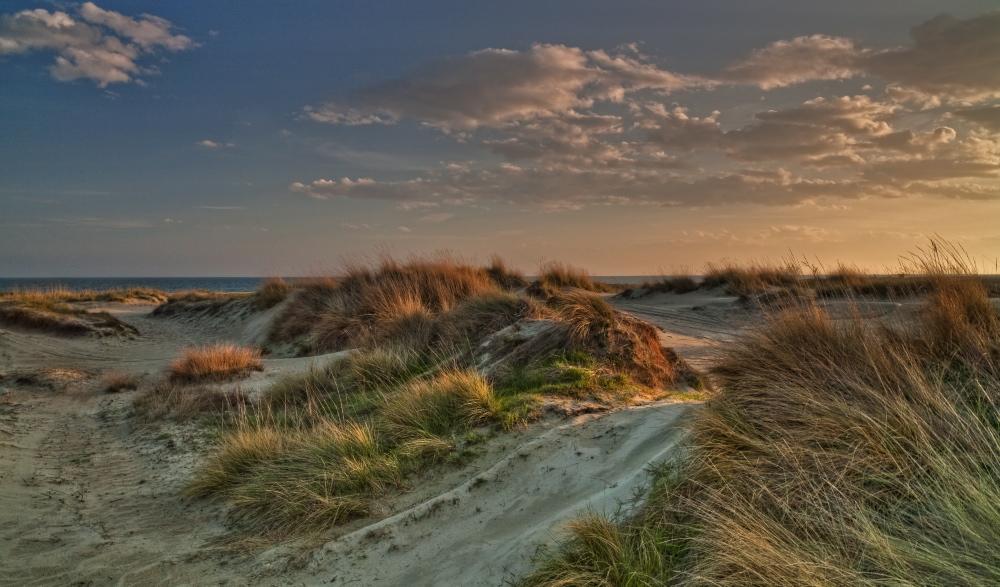 Sandy evening