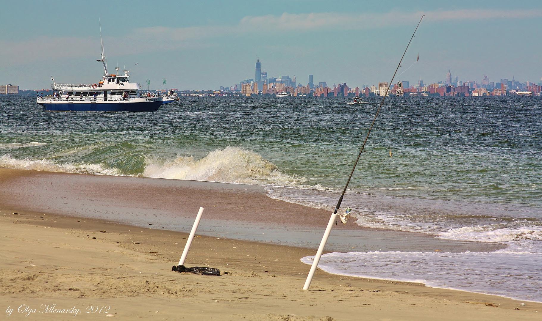 Sandy hook beach 3d galleries 26