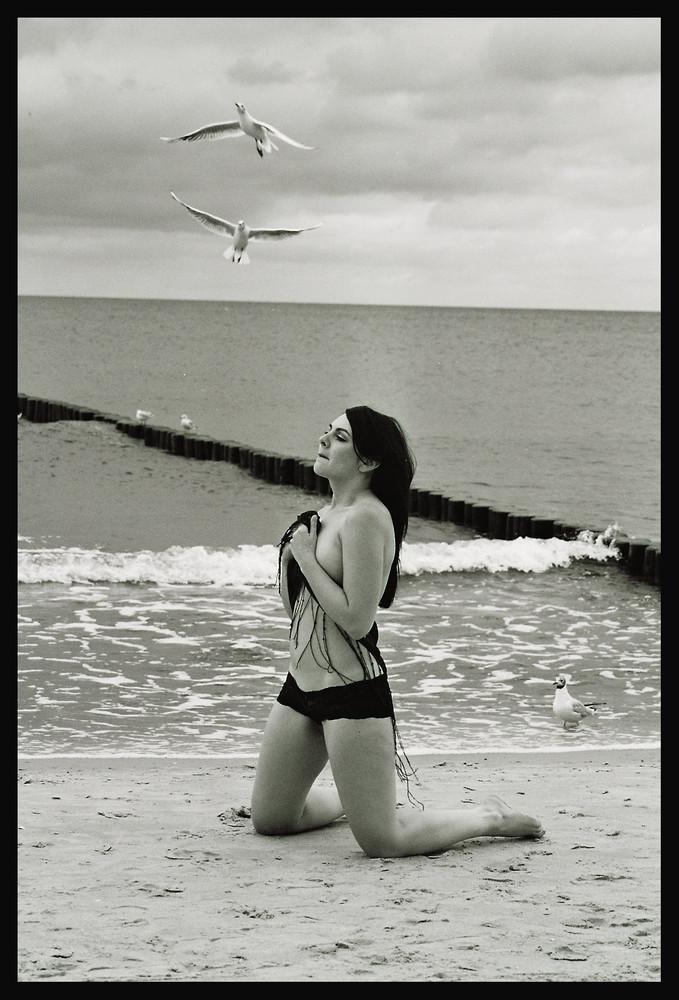 Sandy und das Meer