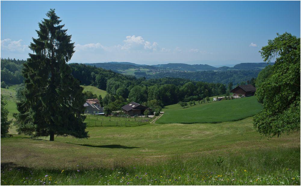 Sanfte Hügel...