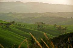 sanfte Hügel der Toskana