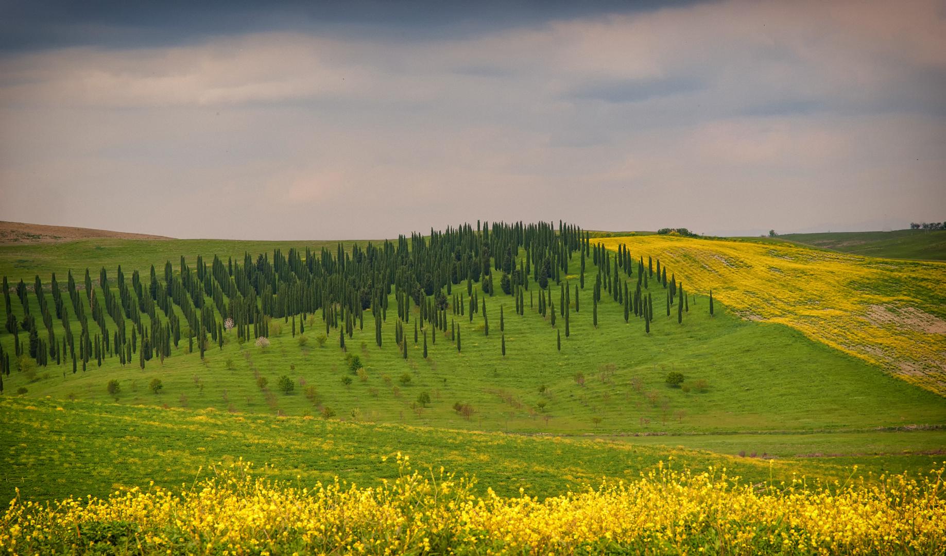 sanfte Landschaft