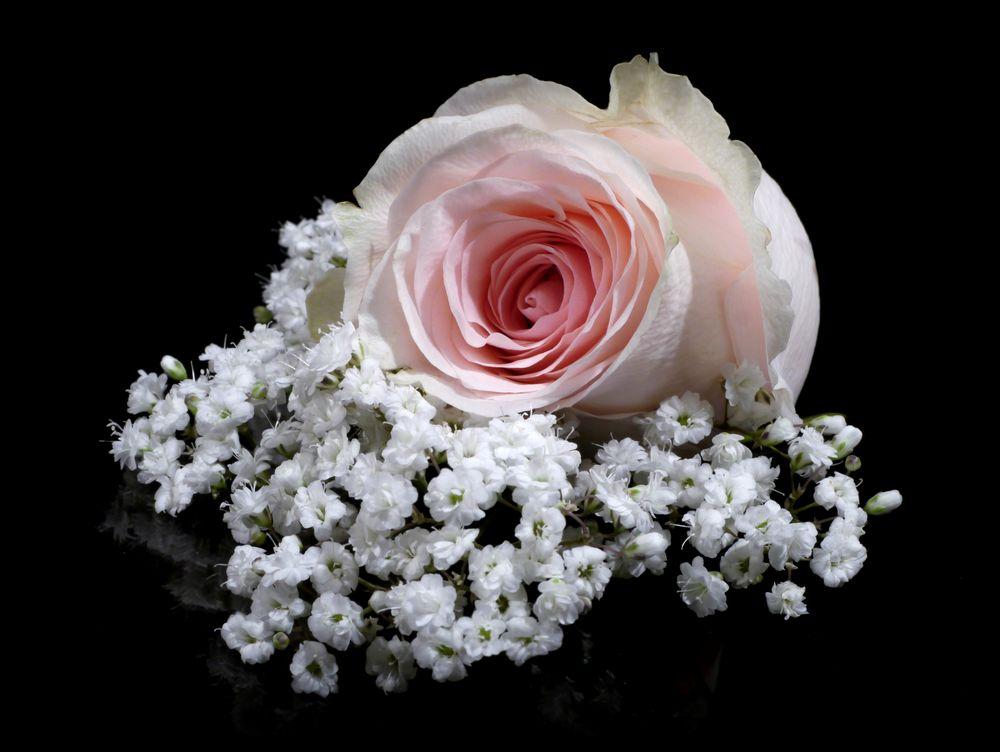 Sanfte Romantik ...