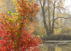 Sanftes Herbst- und Spiegebild