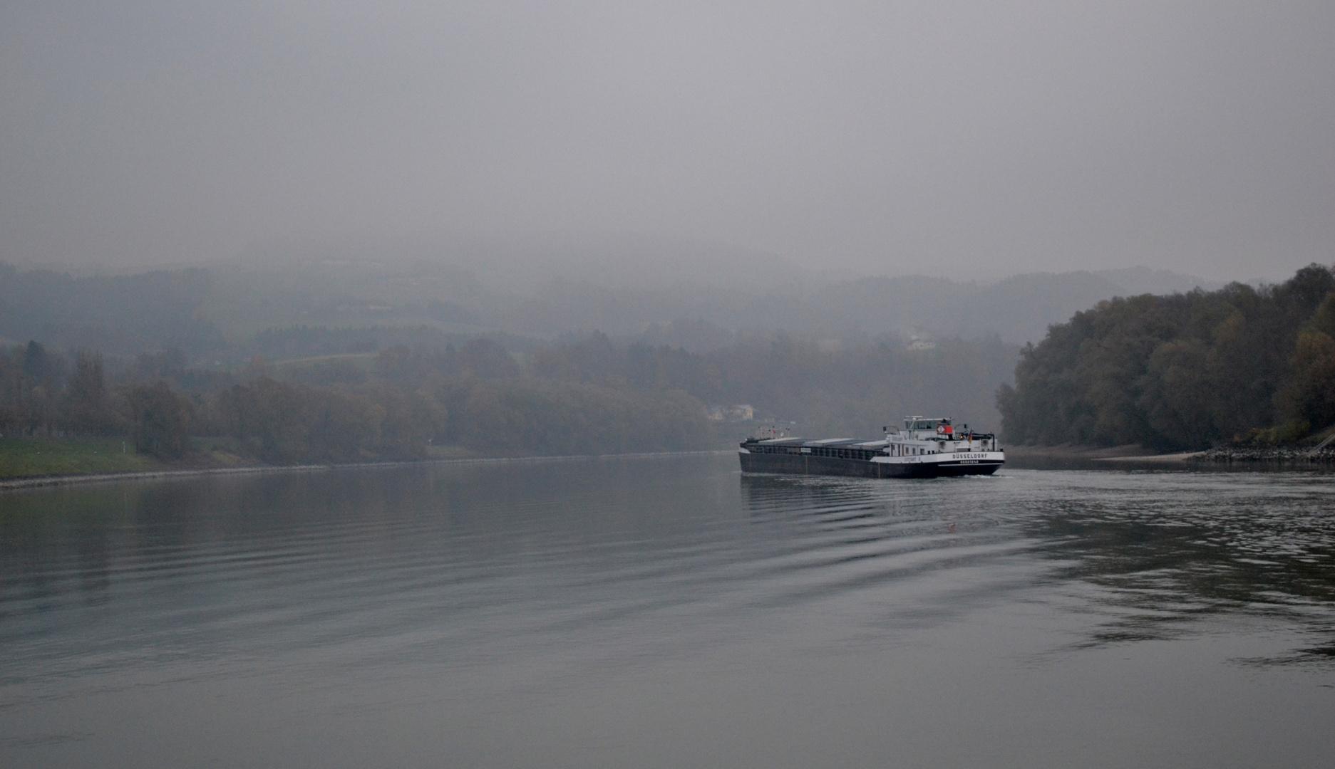 sanftes Licht über der Donau