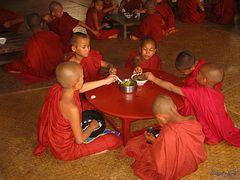 Sangha - Myanmar