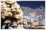 .. Santa Cruz de Tenerife ..