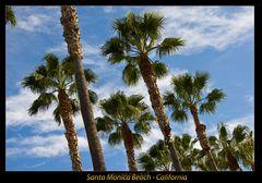 Santa Monica Beach I