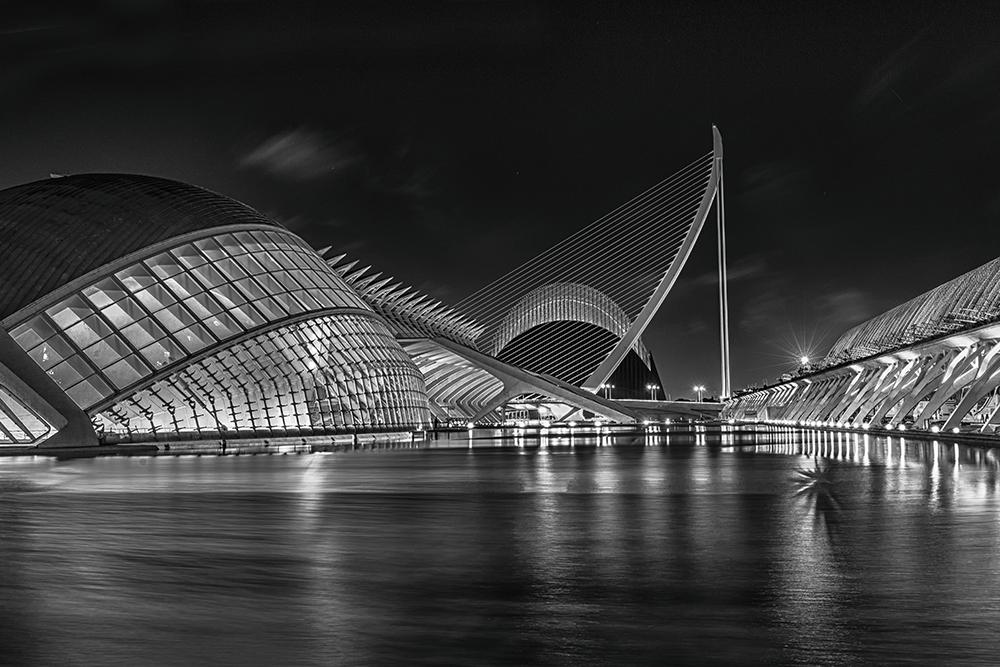 Santiago Calatrava - Ciudad de las Artes y las Ciencias