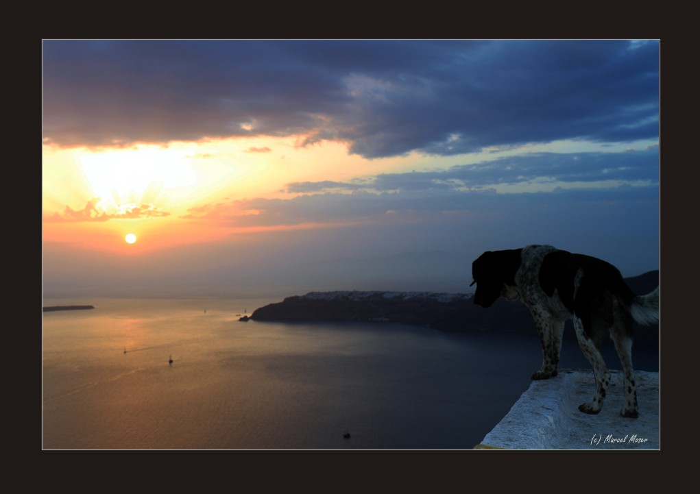 Santorini - Sonnenuntergang mit Hund ;-)