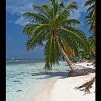 Saona Island - Dominican Republic 2006