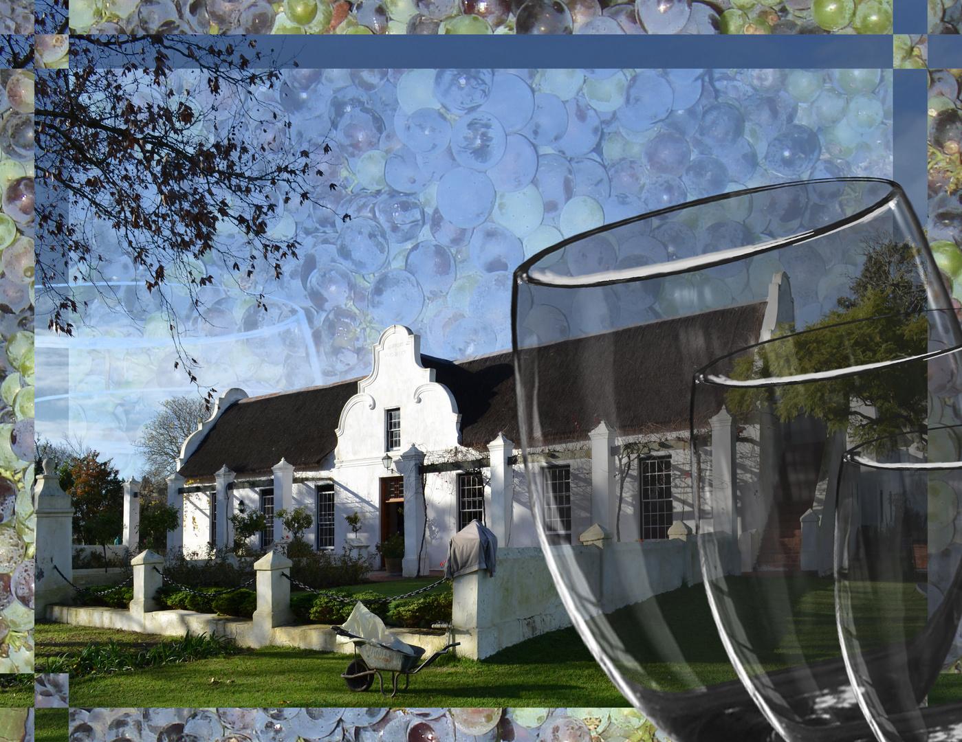 S_AP-PM-WL-701-f-Vergenoegd Wine Estate