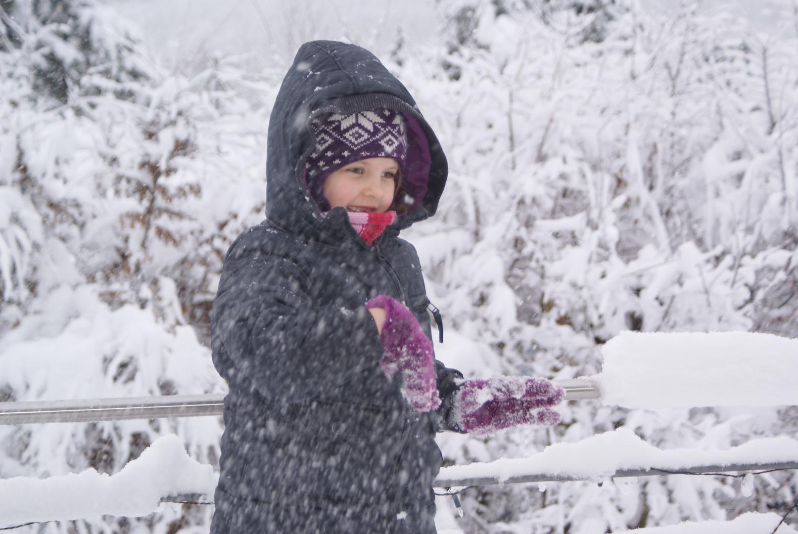Sapß im Schnee