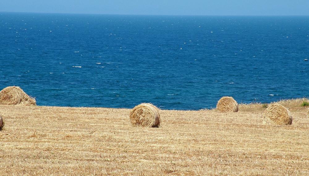 Sardegna...terra e mare