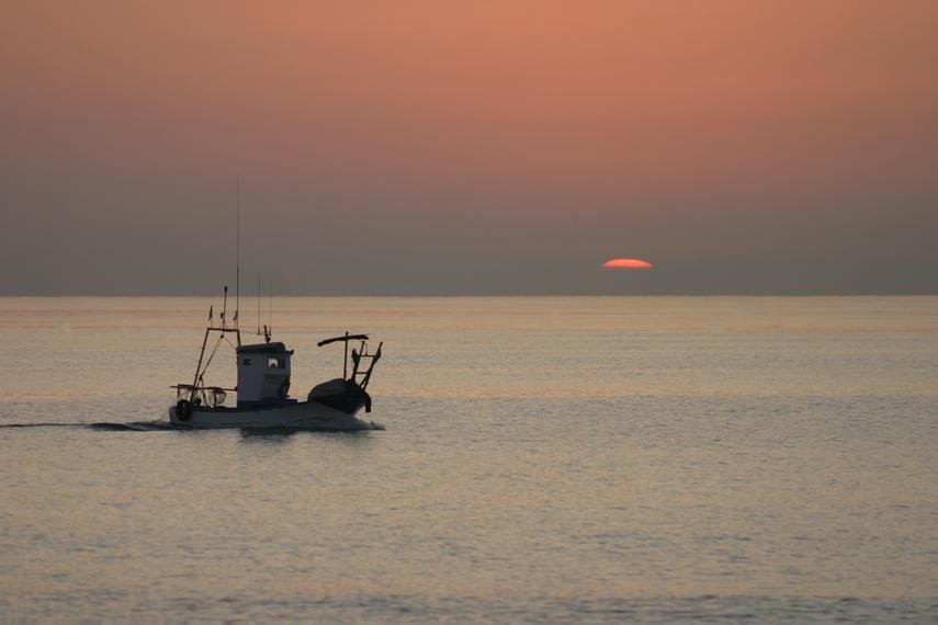 Sardinenfischer