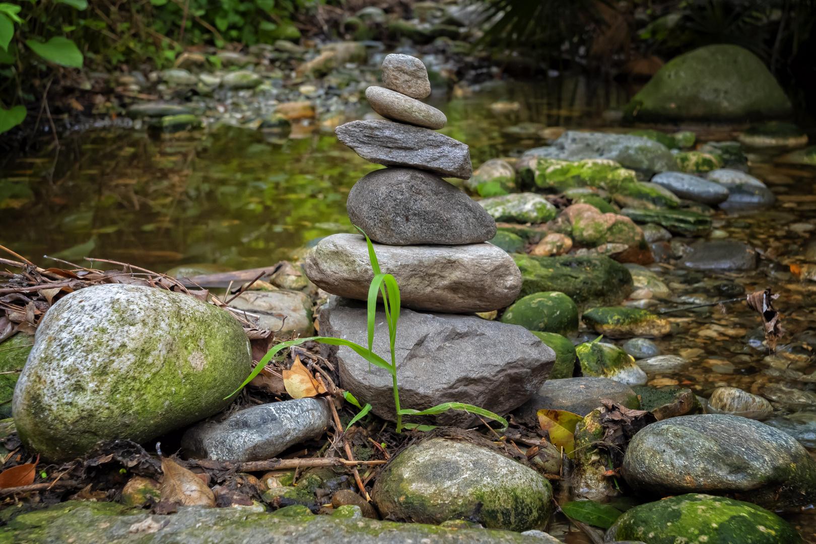 Sassi nel torrente