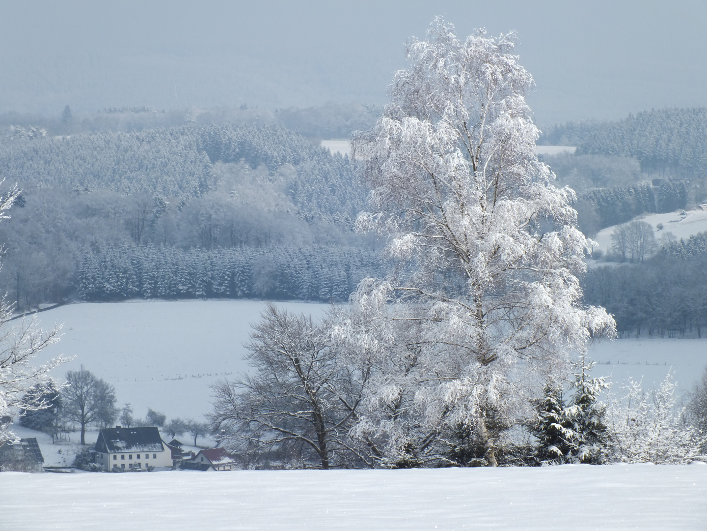 Sauerland, eigentlich auch im Winter ganz schön