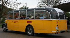 Saurer Omnibus 2