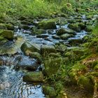 SAUSSBACHKLAMM - Bayerischer Wald  (3)