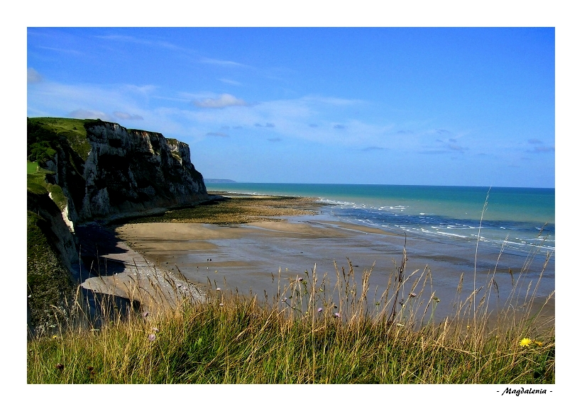 Sauvage et grandiose Normandie
