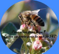 ***Sauvons les abeilles***
