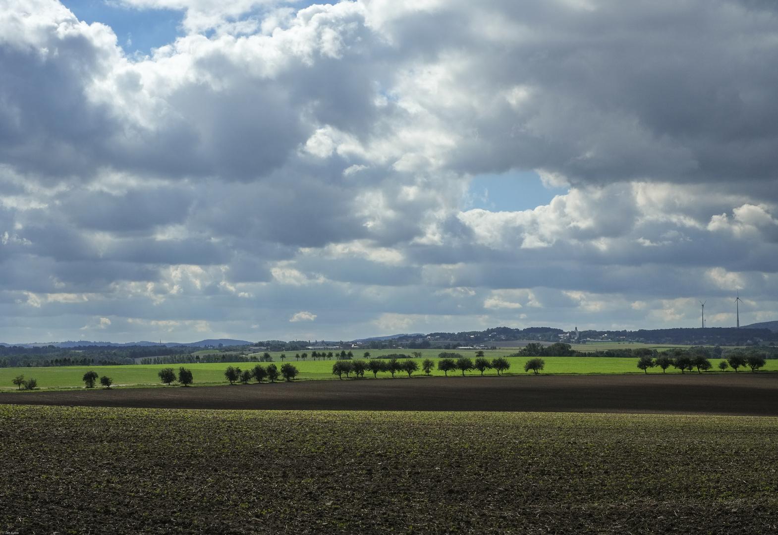 Saxonian Skies VI