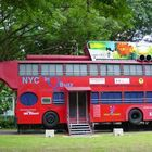 SBS resembled Bus at Youth Park