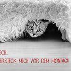 SCH... MONTAG