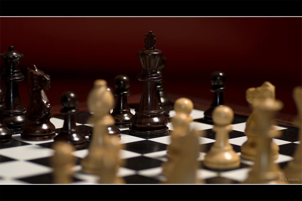 Schach: Der König im Focus
