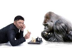 Schach Matt