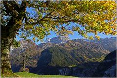 Schächentaler Herbststimmung I