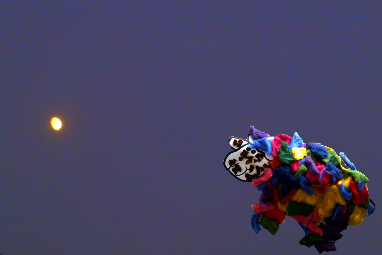Schaf auf dem Weg zum Mond