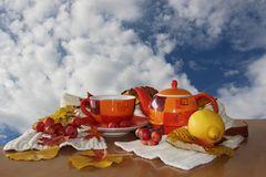 Schal, heißer Tee und träumen...