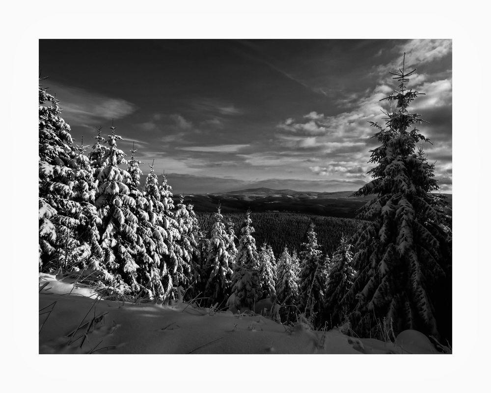 """Schalke / Harz """" der Harz im Winter """""""