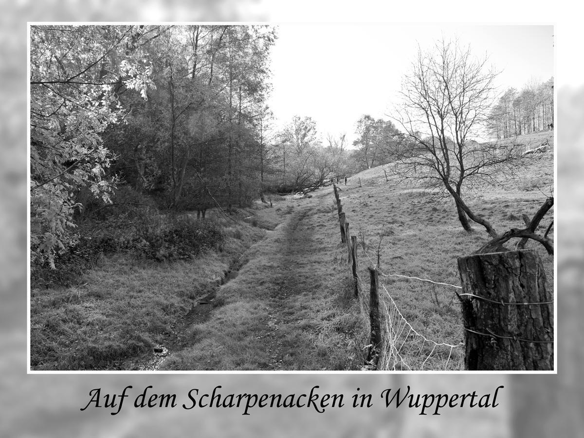 Scharpenacken in Wuppertal