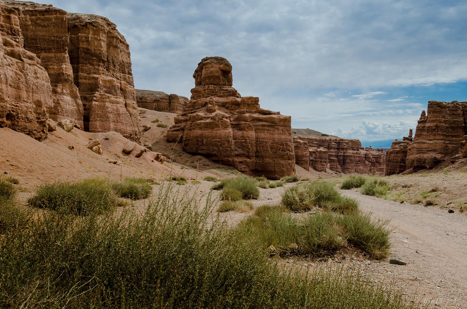 Scharyn Canyon...