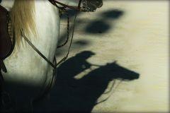 Schatten....