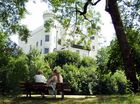Schatten am Schloß unter alten Bäumen