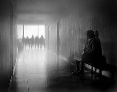 Schatten der Wahrheit