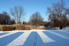 Schatten im Winter
