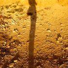 Schatten meiner Selbst ;-)