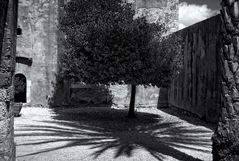 Schatten- Schein ...