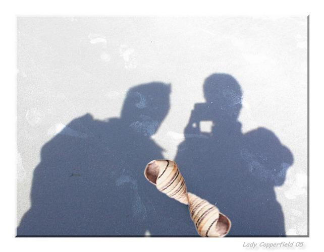 Schattenbild im Sand...