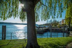 Schattenblick auf den See und die Promenade
