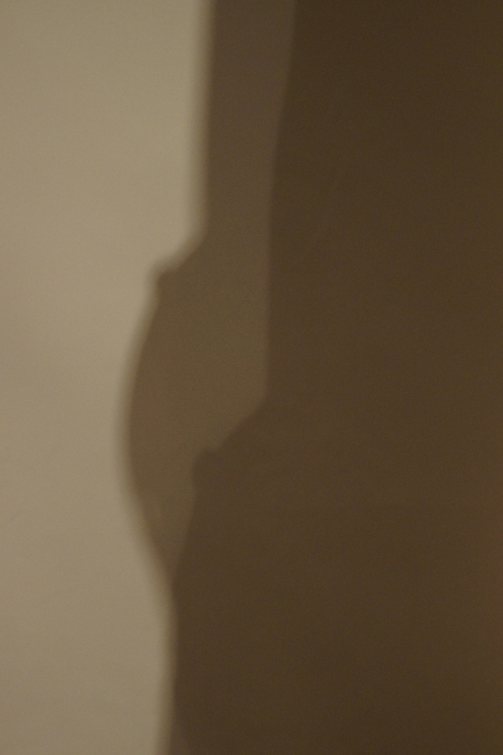 Schattenbrüste